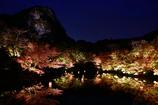 楽園の秋とライトアップ
