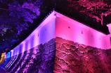 城壁に押し寄せる光
