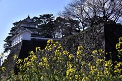 春の島原城