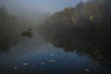 朝霧の中で。。。