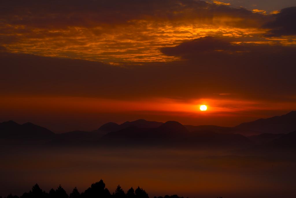 2月16日濃霧の中の一日の始まりにて。。。
