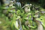ルーブル彫刻美術館3JPG