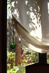 昼下がりの窓辺