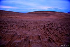 風のアート-砂柱- 鳥取砂丘