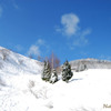 最高の冬晴れ
