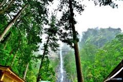 信仰の森 那智大滝