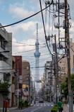 街から生える巨塔