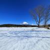 富士山と雪原