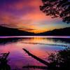 白駒池の朝景#2 (朝焼け編)