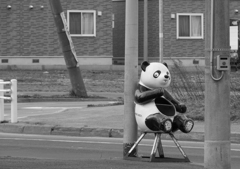 寂しいパンダ