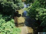 影の架け橋