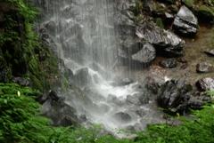 滝シャワー