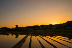 法起寺と水田