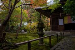 茶人たちが愛した庭と石灯篭