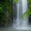 五月雨の箕面大滝