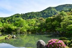 2018新緑の古刹 天龍寺