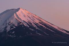 5月の富士