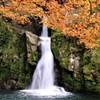 観音滝の紅葉