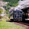 嘉例川駅の春