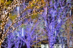 クリスマス・イルミネーション、豊洲IHIビル