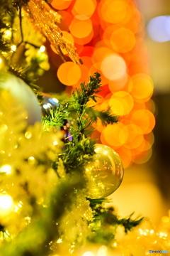 クリスマスツリー・イルミネーションin秋葉原ワシントンホテル