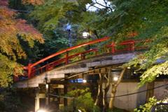 〜河鹿橋〜ライトアップ❣️