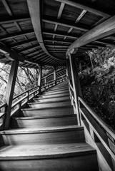 Wooden Stairs of Zenrin-ji
