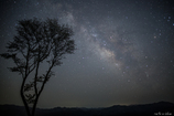 屏風岩公苑の夜 ☆彡