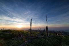 glare of the rising sun