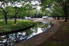 岸辺の風景_代々木公園