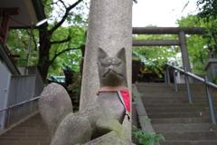 稲荷様の狐_王子稲荷神社