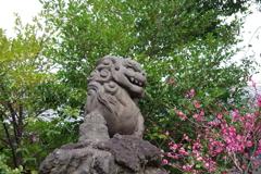 狛犬_中井御霊神社