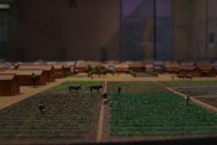 農作業をする_新宿歴史博物館