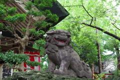 狛犬_江東天祖神社