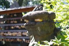 狛犬_白山神社