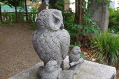 梟_池袋御嶽神社