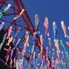 こいのぼり_東京タワー