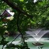 噴水_井の頭恩賜公園