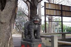 狛犬_諏方神社