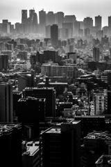 東京モノクローム