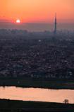 黄昏タワー