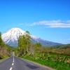 羊蹄山への道