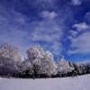 冬 雲 雪