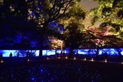 青き寺の夜