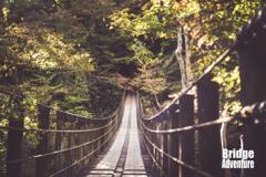 Bridge Adventure