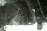 雪景色そして小さな祠