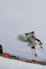 空飛ぶハナちゃん!パート2