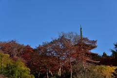 晩秋の三重塔