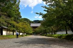 桜馬場からの仁王門