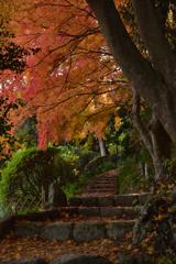 九品寺の晩秋④